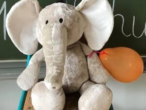 1b - Elefanten